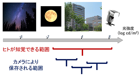 図1 人間の知覚特性とイメージセンサのダイナミックレンジ